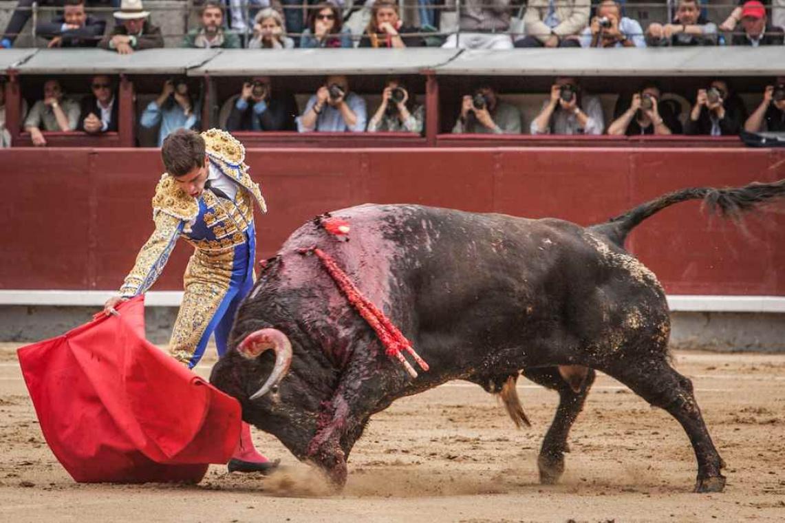 As imagens de Madrid - 27 de maio (c/fotos)