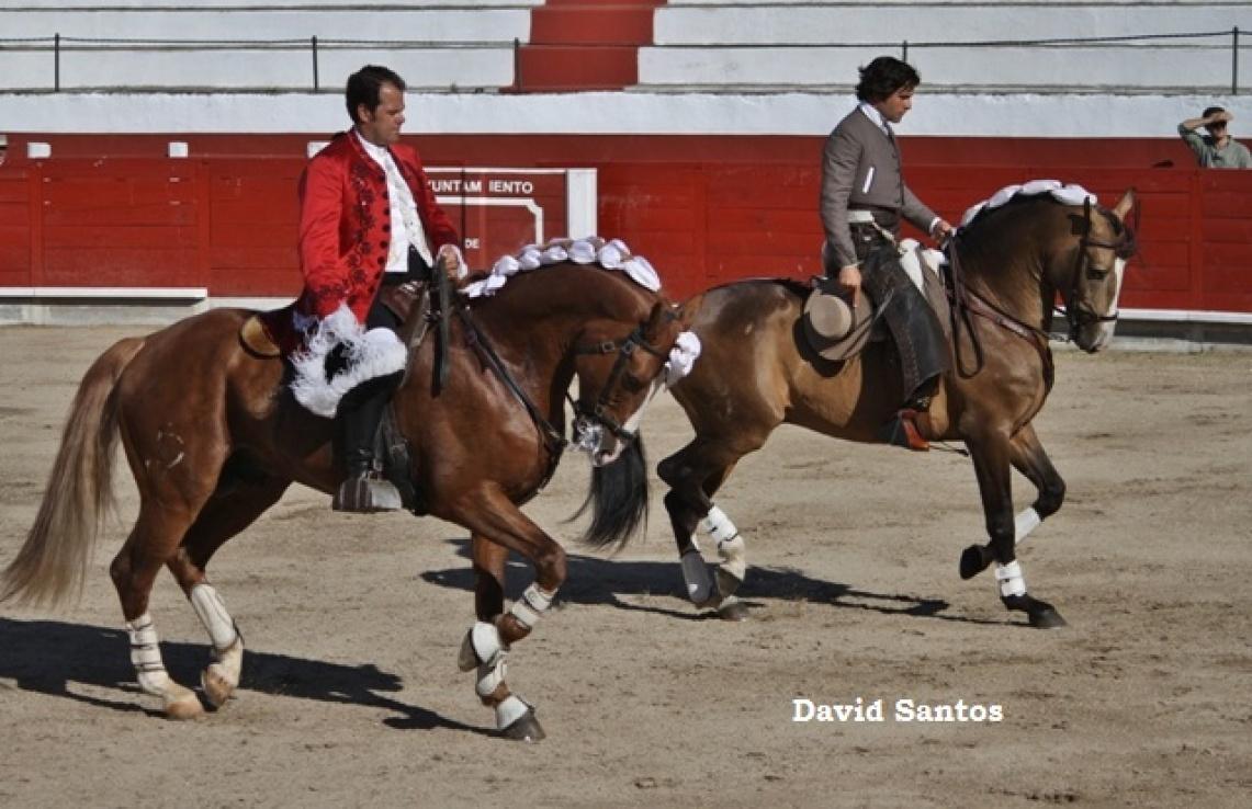 As imagens da corrida de touros realizada em Valência de Alcantara - 15 de Maio (c/fotos)