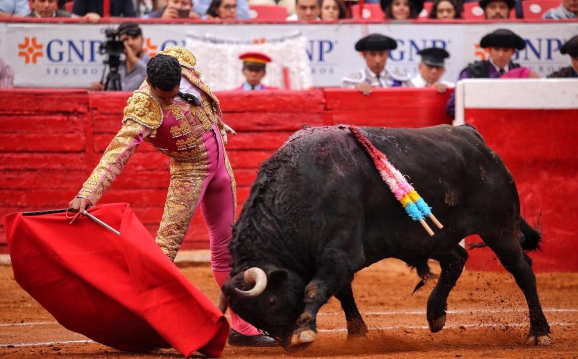 As imagens da Plaza México - 18 de Novembro/18 (c/fotos)