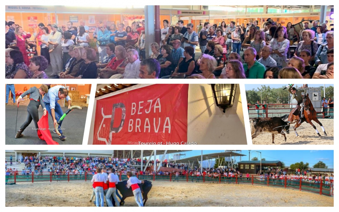 Beja Brava: Três dias de muita aficion e muito público. Veja as imagens de algumas das actividades (c/fotos)