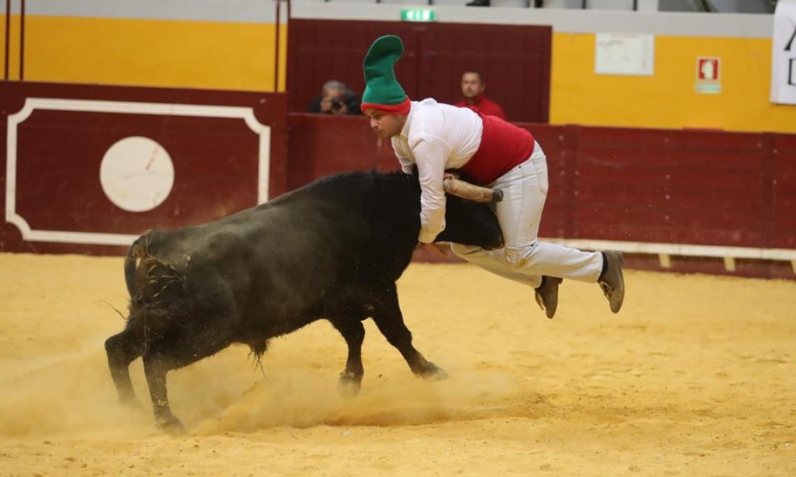 Forcados de Monsaraz vencem concurso de pegas no Coliseu de Redondo (c/fotos)