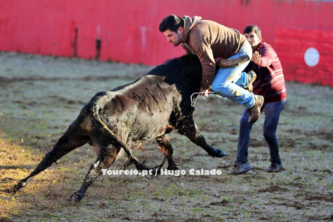 Forcados de Monsaraz realizaram mais um treino de preparação (c/fotos)