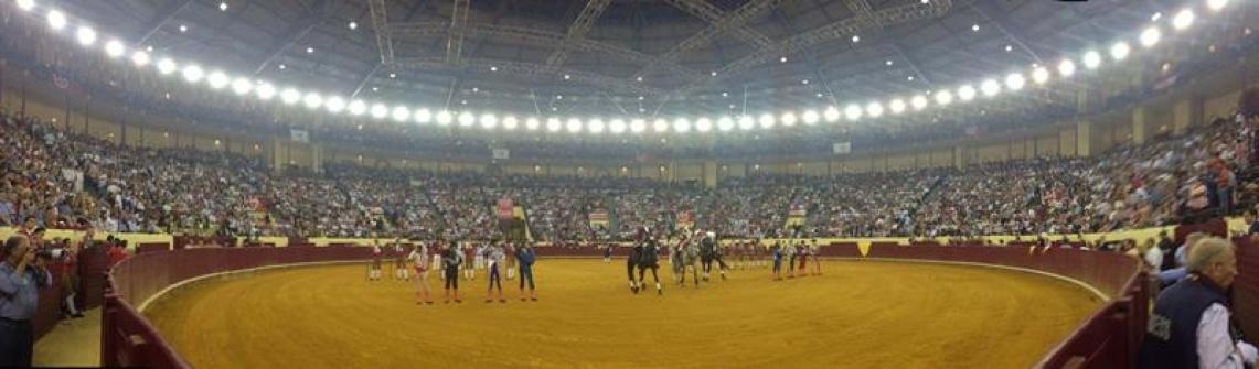 Campo Pequeno: Em noite dedicada ao Emigrante triunfaram os touros Sorraia e Duarte Pinto