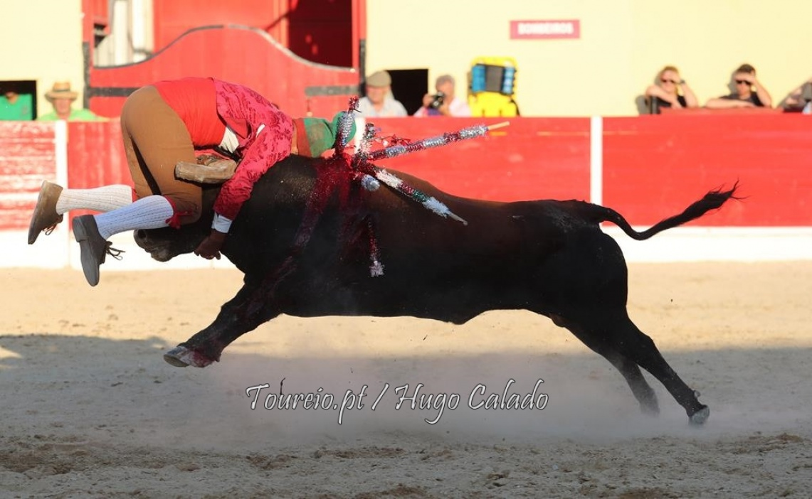 As imagens da Azambuja - 23 de setembro (c/fotos)