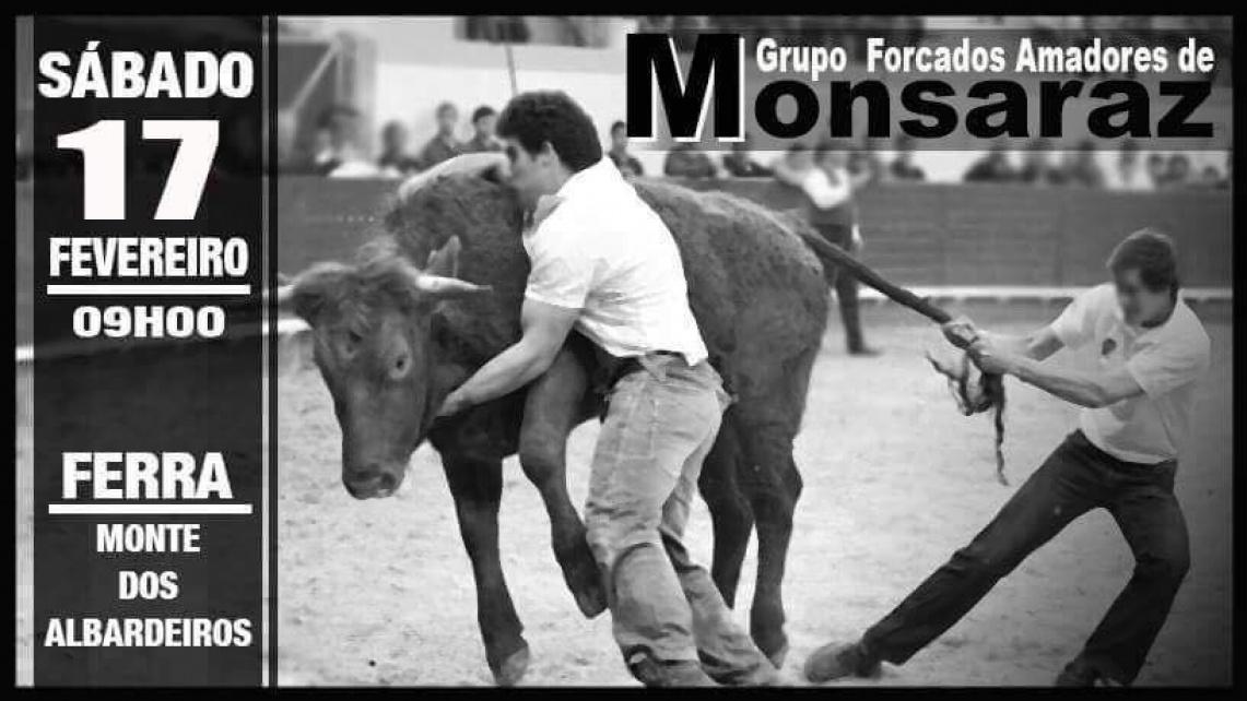 Forcados de Monsaraz realizam ferra