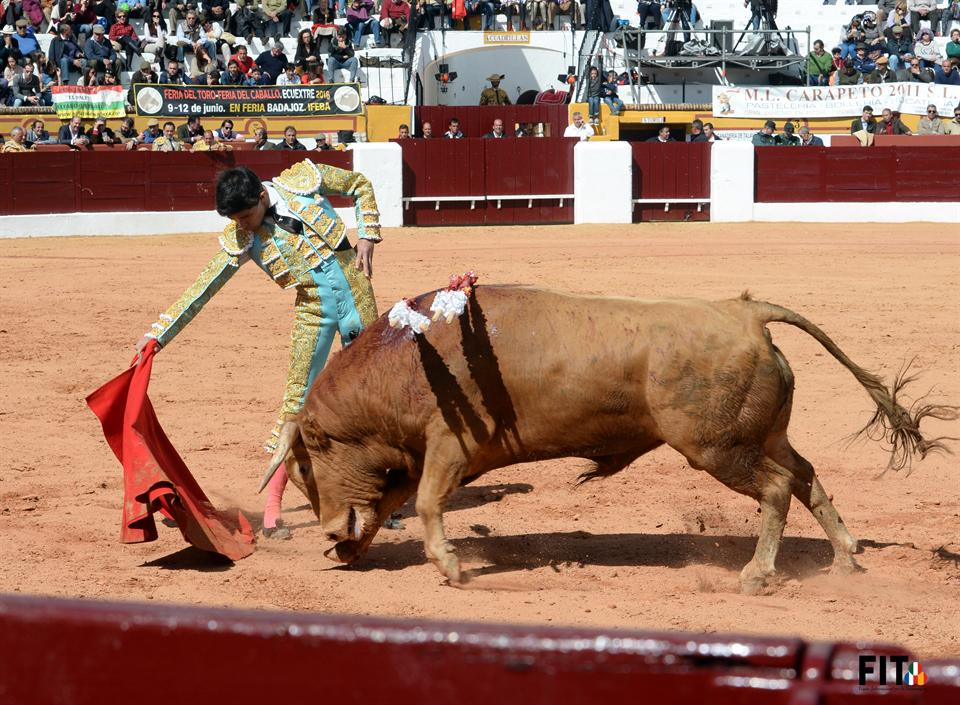 El Juanito em Olivença - Foto: FIT