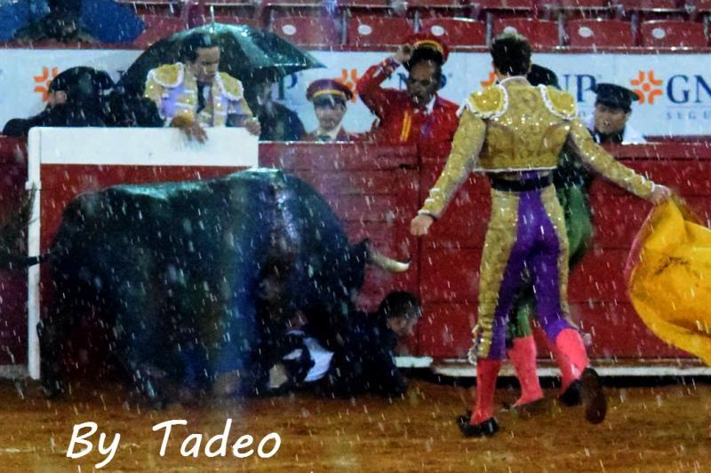 Foto: Tadeo