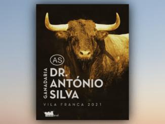 Touros Silva