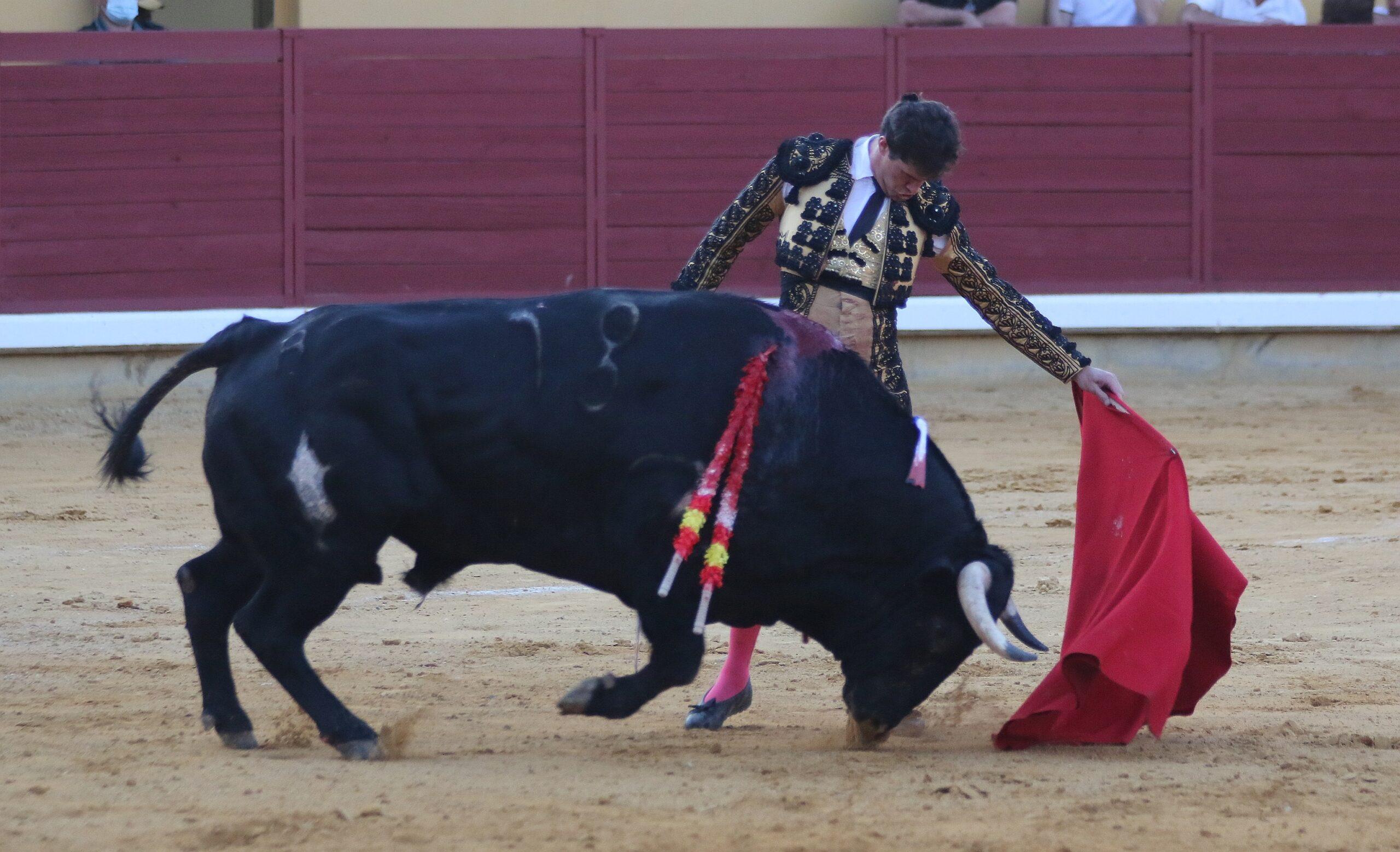 Espanha: Daniel Luque triunfou em Almodôvar del Campo